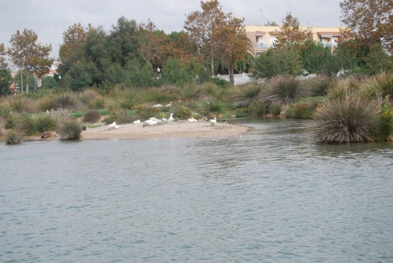 Resultado de imagen de desembocadura riu Foix Cubelles