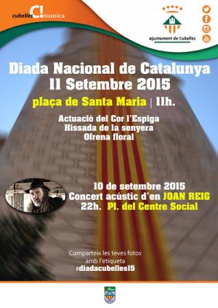 Diada Nacional de Catalunya. 11 de setembre de 2015
